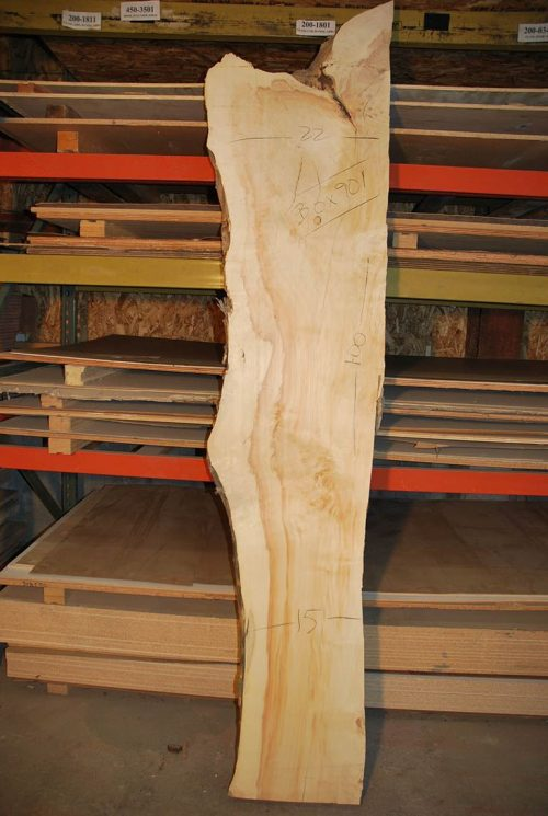 Box Elder Slab 100″