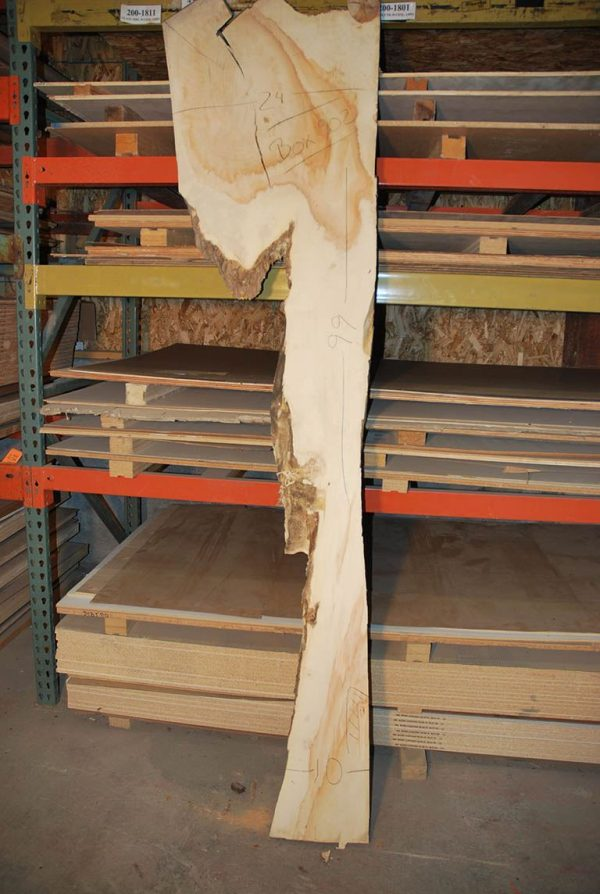 Slabs over 5 Ft Box Elder Slab 99″