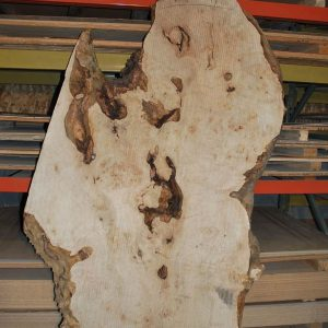 Maple Slab 82″