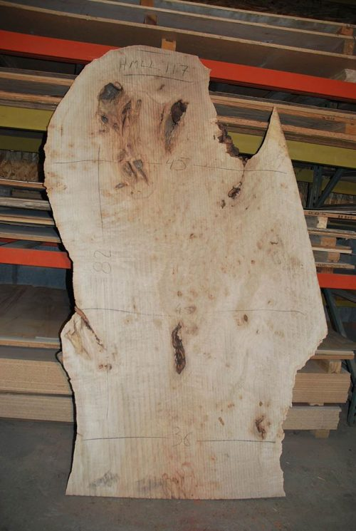 Slabs over 5 Ft Maple Slab 82″ x 37″