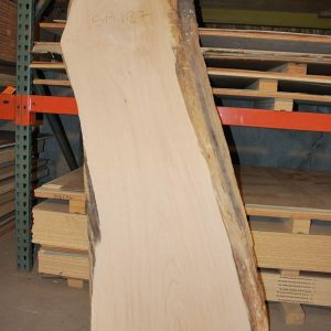 Slabs over 5 Ft Maple Slab 65″