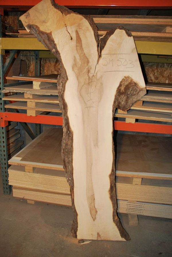 Slabs over 5 Ft Maple Slab 78″