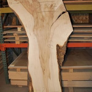 Slabs over 5 Ft Maple Slab 83″