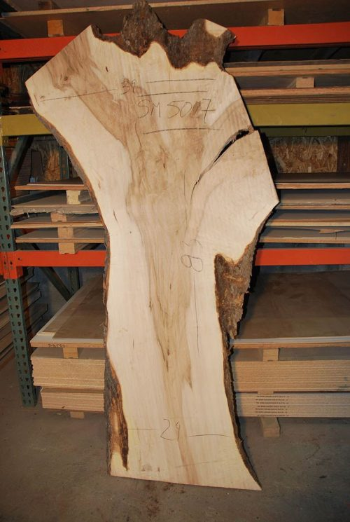 Maple Slab 83″ x 31″
