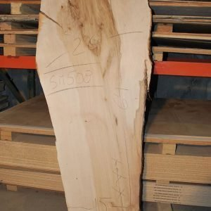 Maple Slab 64″