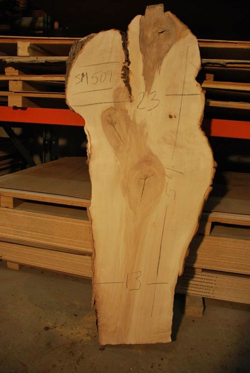 Slabs over 5 Ft Maple Slab 54″ x 18″