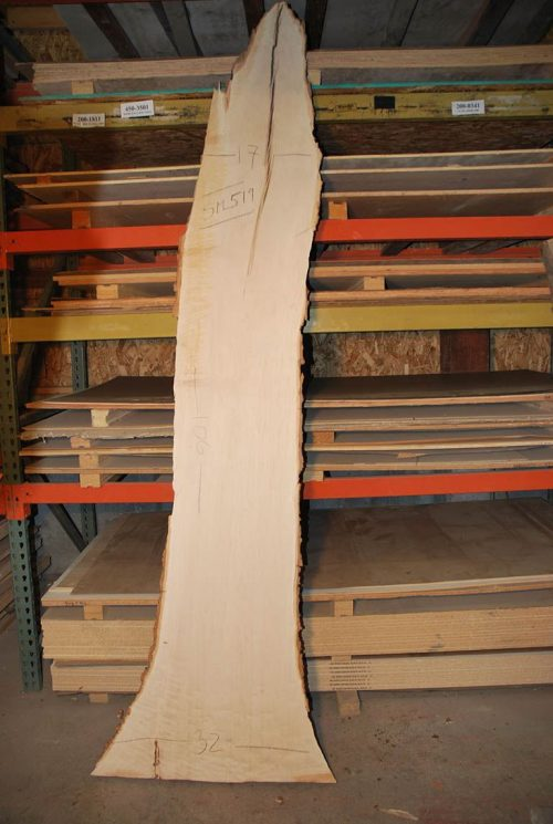 Slabs over 5 Ft Maple Slab 106″ x 25″