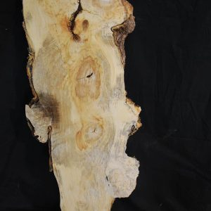 Slabs under 5 Ft Box Elder Slab 39.5″