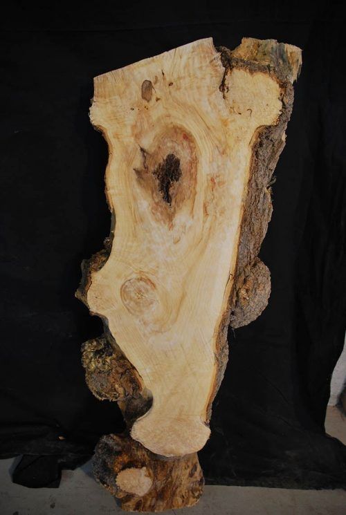 Slabs under 5 Ft Box Elder Slab 39.5″ x 12″