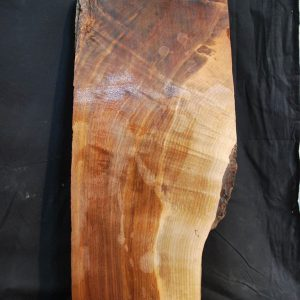 Black Walnut Slab 36″ x 13.5″