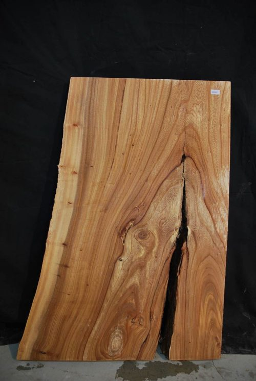 Slabs under 5 Ft Elm Slab 31″ x 17.5″