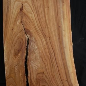 Slabs under 5 Ft Elm Slab 31″