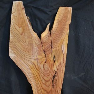Slabs under 5 Ft Elm Slab 42″