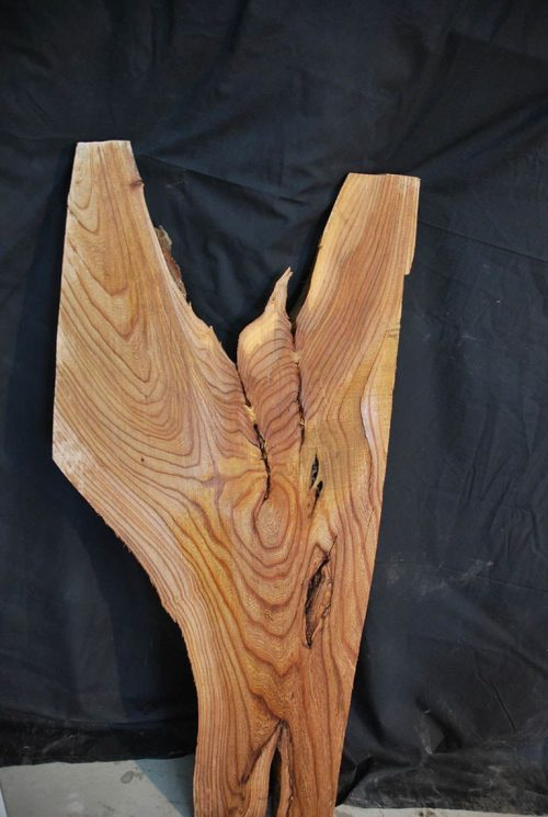 Slabs under 5 Ft Elm Slab 42″ x 18.5″