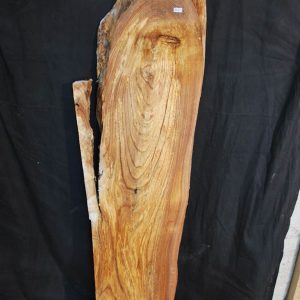 Slabs over 5 Ft Elm Slab 61″