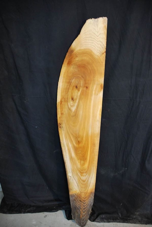 Slabs under 5 Ft Elm Slab 57″