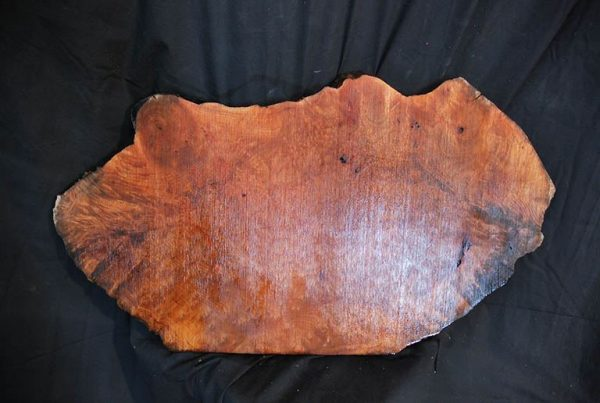 Burls Madrone Burl 27″