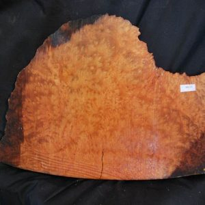 Burls Madrone Burl 18″