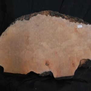 Burls Madrone Burl 25″