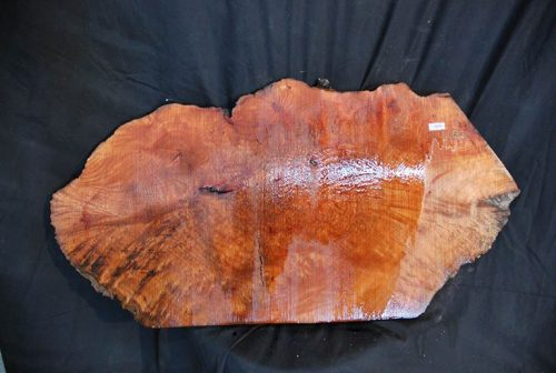 Burls Madrone Burl 31″
