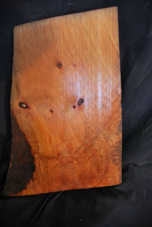 Burls Madrone Burl 15″