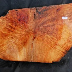 Burls Madrone Burl 19″