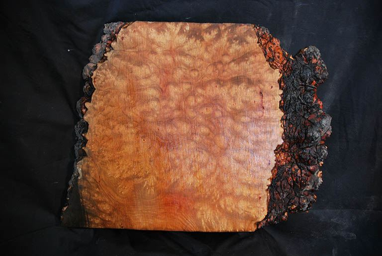 Madrone Burl 20 Woodworker Network