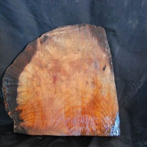 Burls Madrone Burl 13″