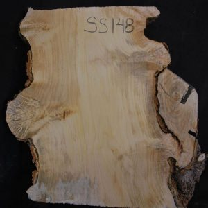 Box Elder Cluster Burl 18.5″