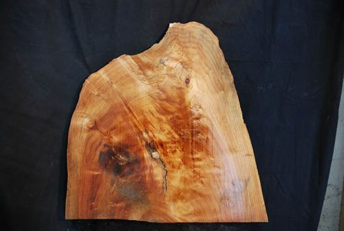 Madrone Burl 27: