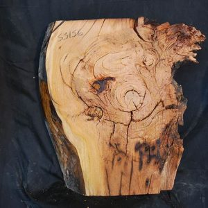 Box Elder Slab 20″