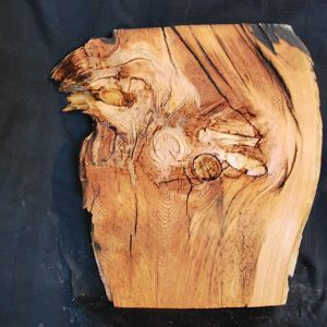Box Elder Slab 20″ x 18″