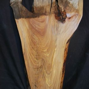 Slabs under 5 Ft Elm Slab 36″