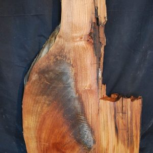 Slabs under 5 Ft Elm Slab 26″