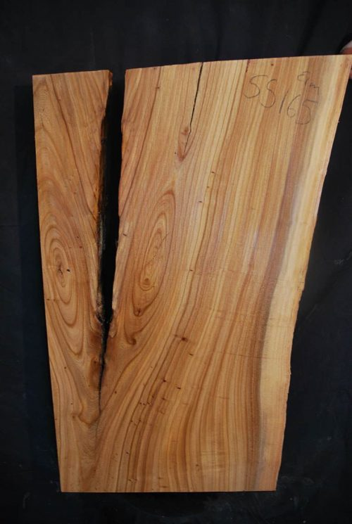 Featured Slabs Elm Slab 33″ x 18.5″