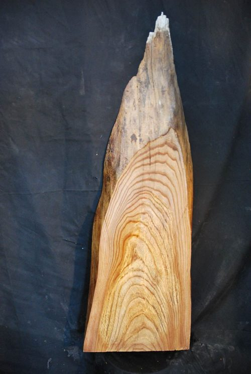 Slabs under 5 Ft Elm Slab 40″ x 14″