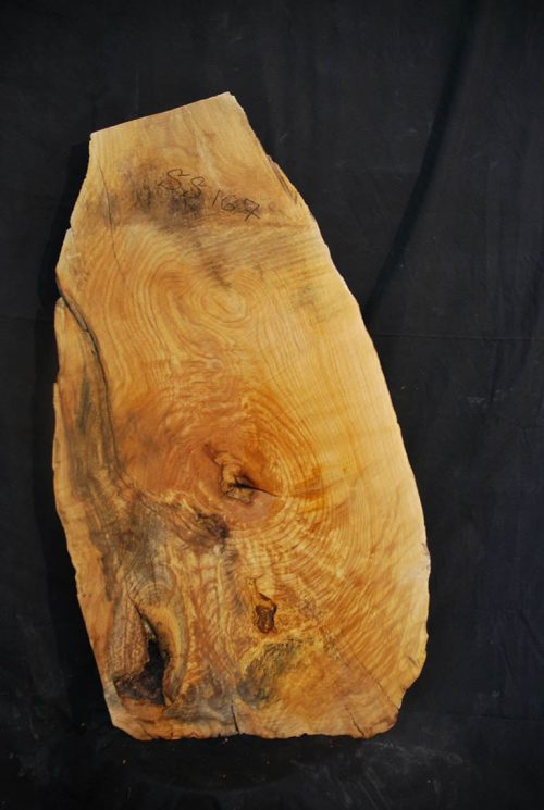 Slabs under 5 Ft Elm Slab 37.5″ x 18″