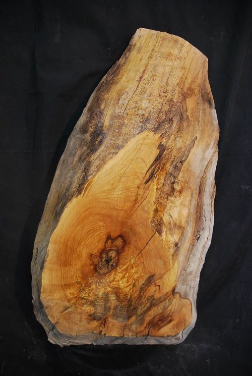 Slabs under 5 Ft Elm Slab 37.5″