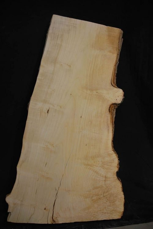 Slabs under 5 Ft Maple Slab 33.5″ x 17″