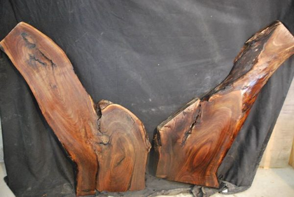 Slabs under 5 Ft Walnut Slab Set 41″