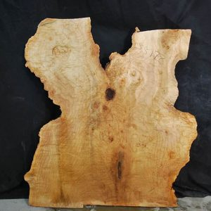 Maple Slab 34.5″
