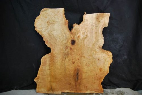 Featured Slabs Maple Slab 34.5″ x 32.5″