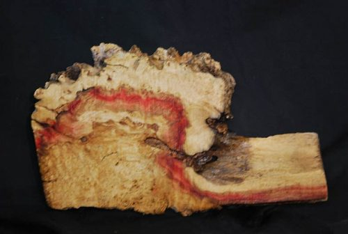 Burls Flame Box Elder Burl 19″