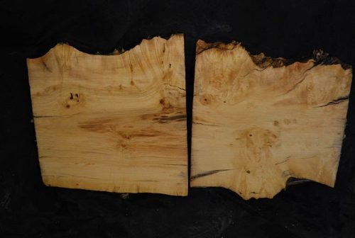 Burls Box Elder Cluster Burl Set 12.5″