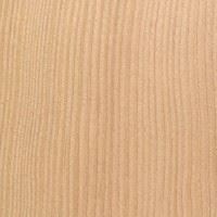Domestic Elm, Eastern Red