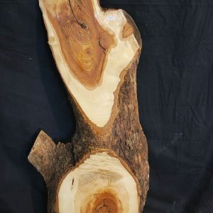 Slabs under 5 Ft Ash Slab 44″