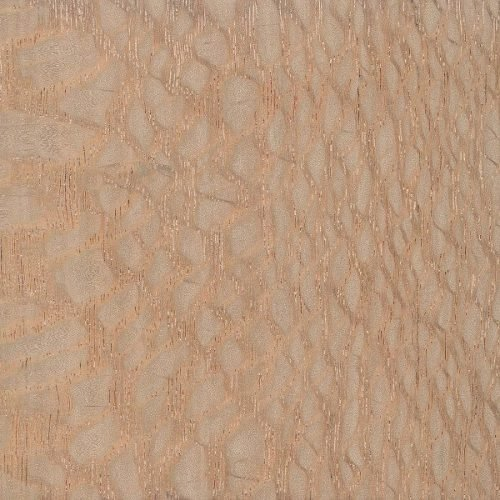 Exotic Lacewood