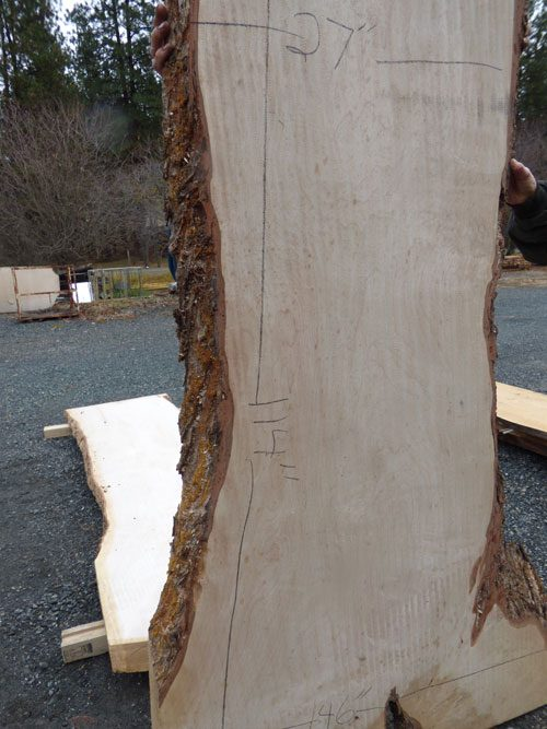 Big Maple Live Edge Wood Slab for Table