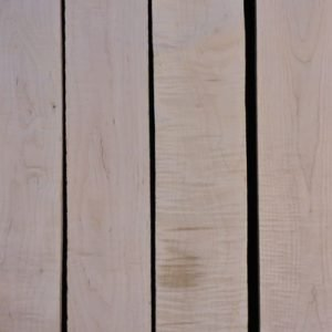 Eastern Red Curly Maple – Pack 2