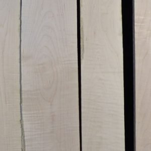 Eastern Red Curly Maple – Pack 4